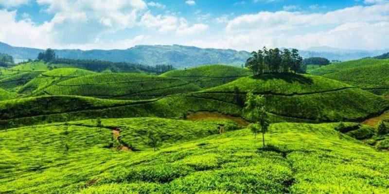 Menikmati Perjalanan ke Hill Stations di Kerala