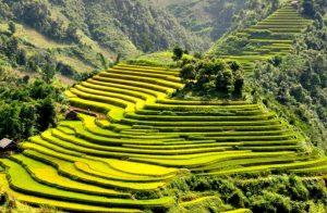 Rute Trekking Vietnam