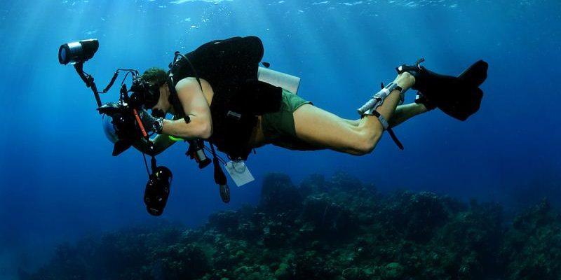 Wisata Scuba Diving
