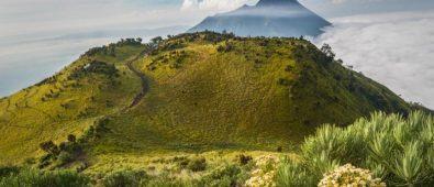 7 Savana di Indonesia yang Memanjakan Mata